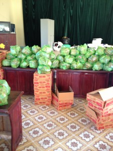 Foods and supplies for Hoa Khanh Center June 2013